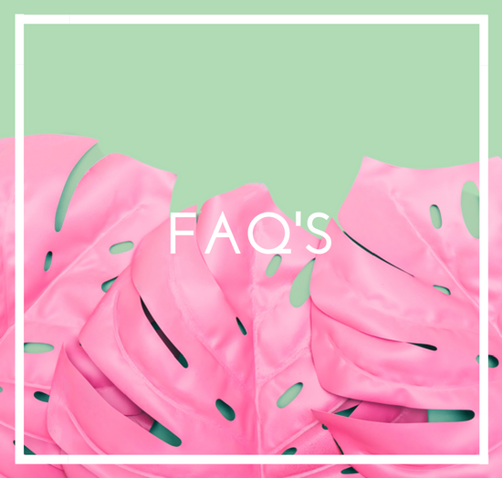 flamingo-faqs